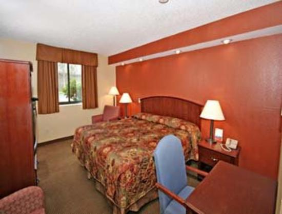 Super 8 Wilmington: 1 King Bed Guest Room