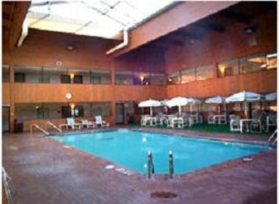 Woodfield Inn and Suites: Pool view