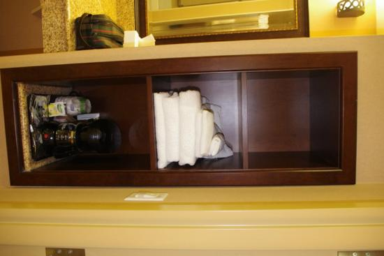 Hampton Inn Sudbury: Bath shelf for personal use