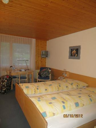 Hotel Alpina: Bedroom