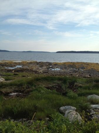 Bar Harbor Campground KOA: view from campsite 405