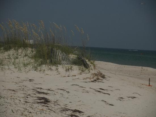 Coombs House Inn: Beach at St. George Island