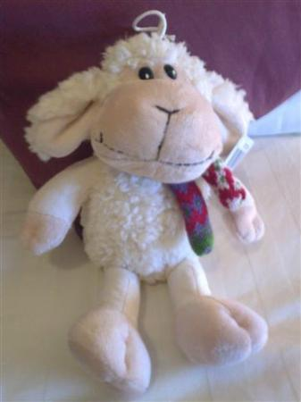Hotel Doolin: Shaggy Sheep welcomes you to your room.
