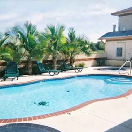 Oxford Inn & Suites Webster: Pool View