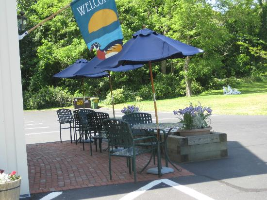 Eagle Wing Guest Motel: You can enjoy your breakfast outside