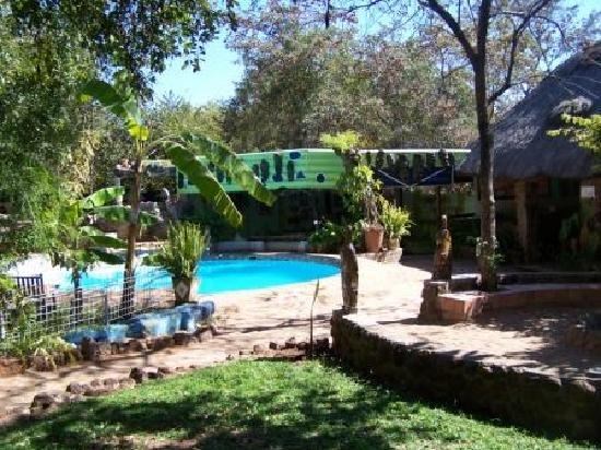 Victoria Falls Backpackers: Pool and reception area