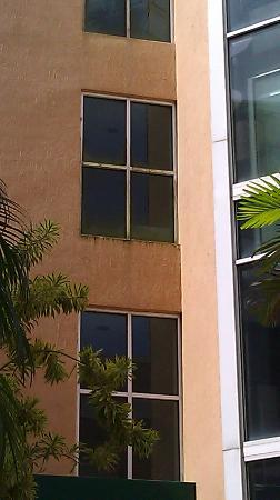 Rodeway Inn South Miami - Coral Gables: Mildew growing on the windows/walls.