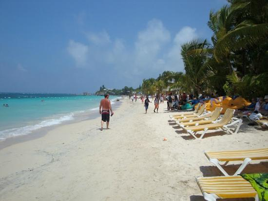 Mayan Princess Beach & Dive Resort: Directly in front of hotel. looking right