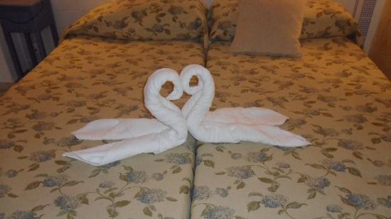 Hostal Plaza Cantarero: towel art on the bed