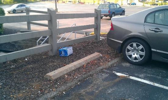 Quality Inn Maryland Heights: Trash around the parking lot.