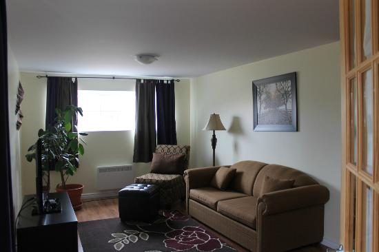 Moose River Guesthouse: The private sitting area with a double size sofabed (in the second bedroom of the apartment suit