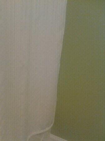 Best Western Braselton Inn: Nice bathroom curtains
