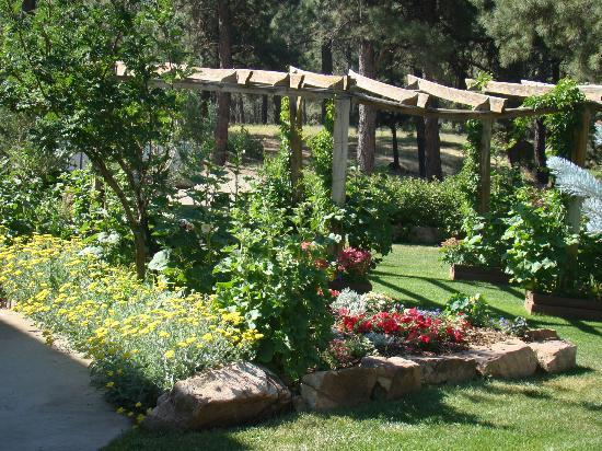 Canyon Crest Lodge: One of the gardens