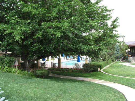 River Terrace Inn: Beautiful trees and grounds, pool
