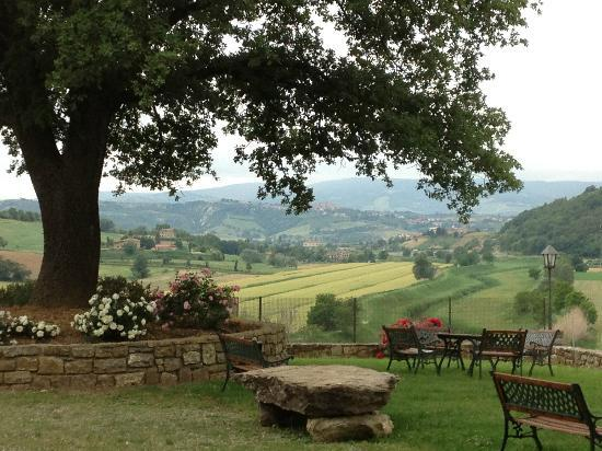 Agriturismo Il Colombaio: peace...we gathered here nightly