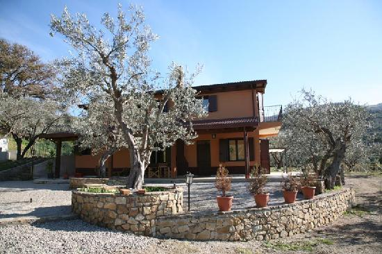 Santa Tecla olive grove Accommodations