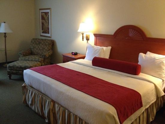 BEST WESTERN PLUS Airport Inn &amp; Suites: very hard bed