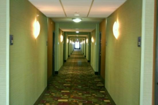 Holiday Inn Express Troutville-Roanoke North: Hallway, 2nd floor