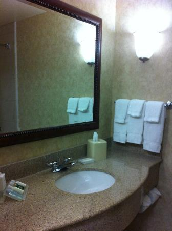 Hilton Garden Inn St. George: bathroom