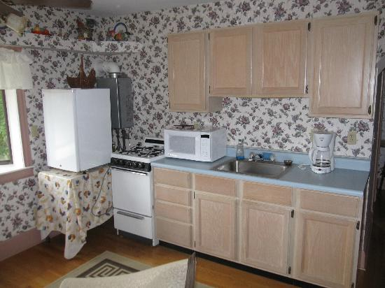 Riverside Inn and Restaurant: kitchen - upper coach room