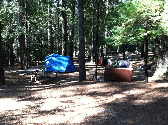 Hodgdon Meadow Campground: Site 35