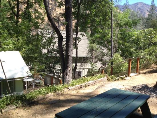 Indian Flat Campground: Our view out the door of our Tent Cabin at Indian Flat