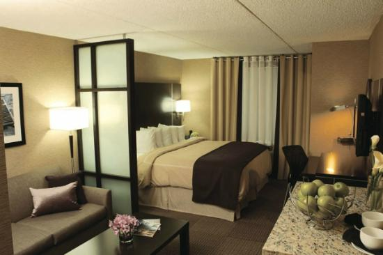 Comfort Suites & Conference Centre Sault Ste. Marie: Junior King Suite