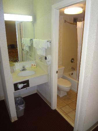 Days Inn Nashville at Opryland: Sink area, which is inside the space of the room itself.