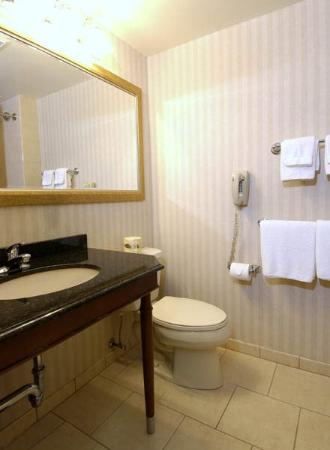 Rockville Centre Inn: Bathroom Rc