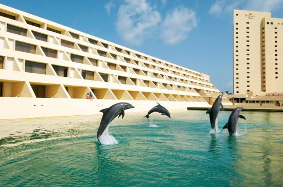 Dreams Cancun Resort &amp; Spa: Delphinus Dreams Cancun