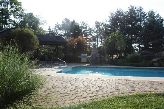Whispering Oaks Bed & Breakfast: The pool.