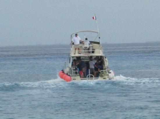 Suites Bahia: Lots of boats coming & going during the day.
