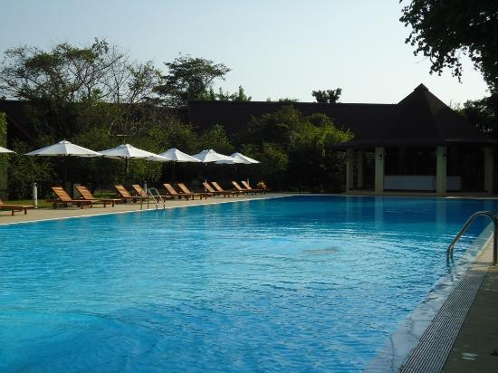 Green Paradise Agro Eco Hotel: Pool