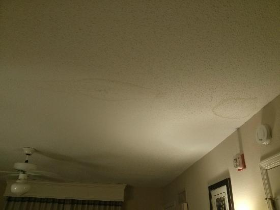 Homewood Suites by Hilton Nashville Brentwood: Water stains on the bedroom ceiling