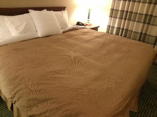 Homewood Suites by Hilton Nashville Brentwood: Wrinkled bed... really?