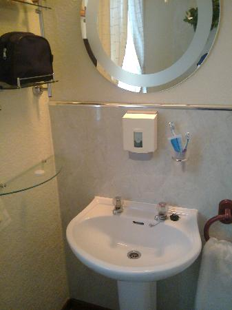 The Laurels B & B: The sink and mirror with shelves
