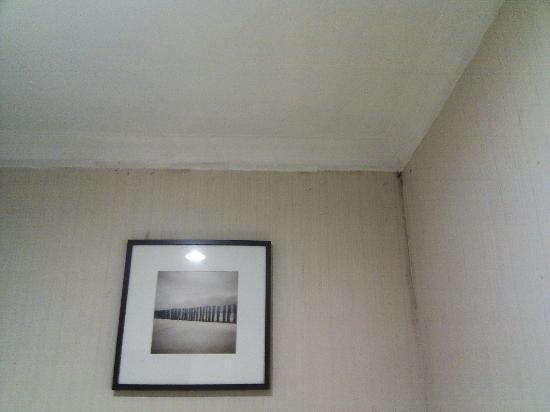 : mouldy ceiling corner, but not too bad