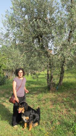 A Casa di Olivo: Beautiful, hospitable and friendly Laura with Rocco (I think) in the beautiful olive farm :)