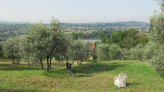 A Casa di Olivo: Another wonderful view from the olive farm just behind the house