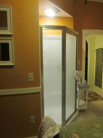 Thistledown Inn B&B: ensuite shower :)