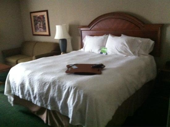 Hampton Inn San Diego - Kearny Mesa: King Bed