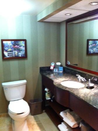 Hampton Inn San Diego - Kearny Mesa: Bathroom