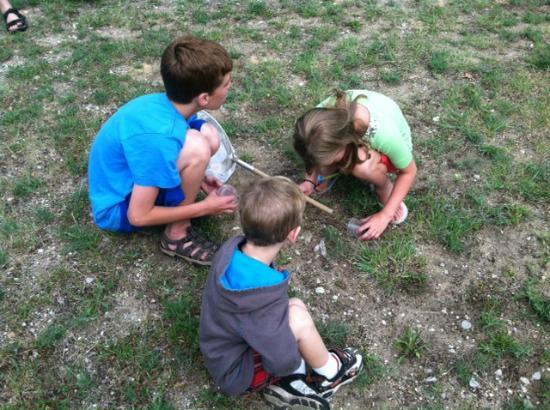 Interlochen, MI: bug finding activity from the park