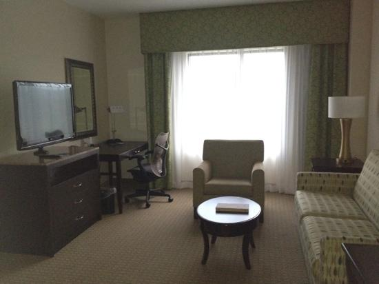 Hilton Garden Inn Arlington/Shirlington: living area