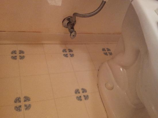 Bathroom Floor Black Mold : Bathroom floor black mold included for night