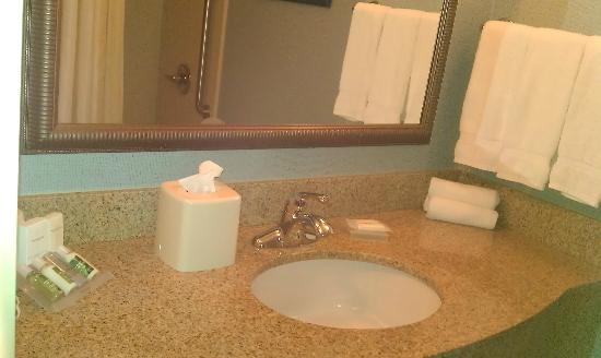 Hilton Garden Inn Evansville: bathroom vanity and mirror