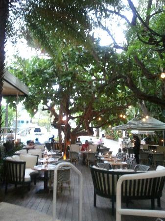 The Raleigh Miami Beach: Just before sunset at the outside bar
