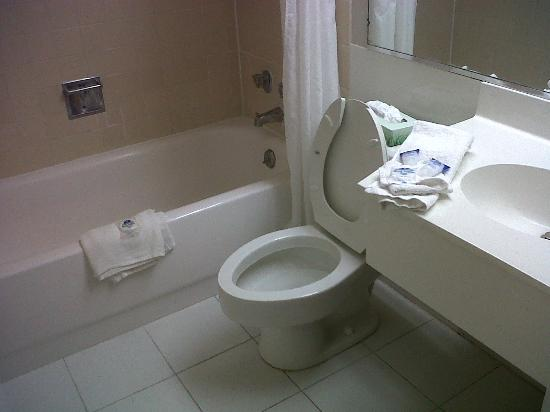 America's Best Value Inn Sandusky: tidy bathroom as we checked in