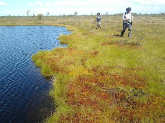 Wilderness Experiences in Soomaa National Park