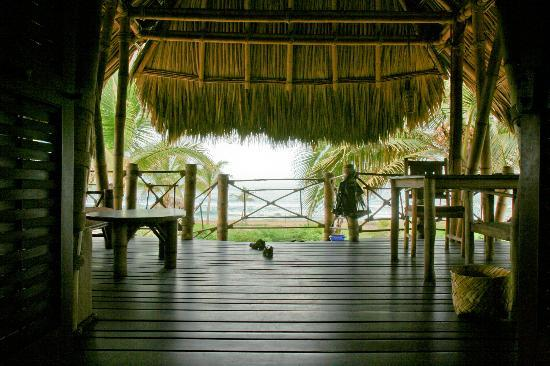 Playa Viva: In the Private Casita